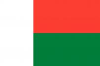 Flag_of_Madagascar[1]