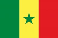Flag_of_Senegal[1]